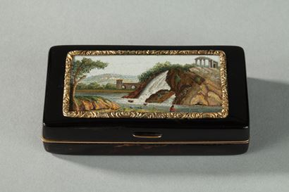GOLD-LINED, TORTOISESHELL MICROMOSAIC SNUFF BOX.<br/> FIRST HALF OF THE 19TH CENTURY WORK